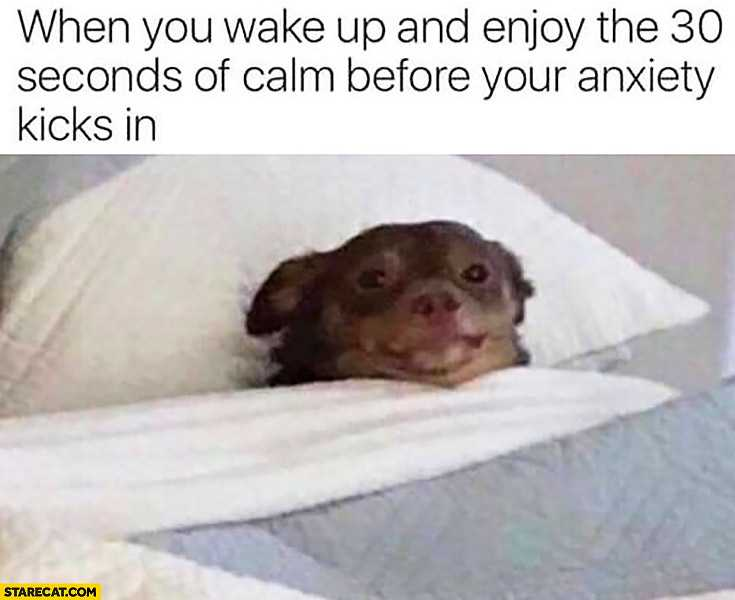 Hilarious Anxiety Memes - All 30 Seconds