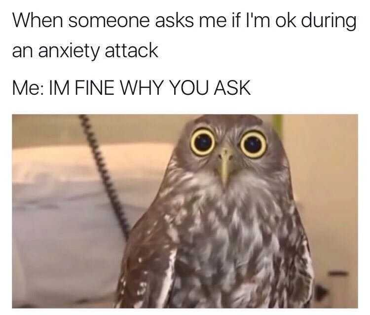 Funny Anxiety Memes - Anxiety Owl