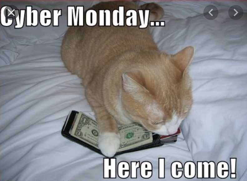 cyber monday animal meme - here i come