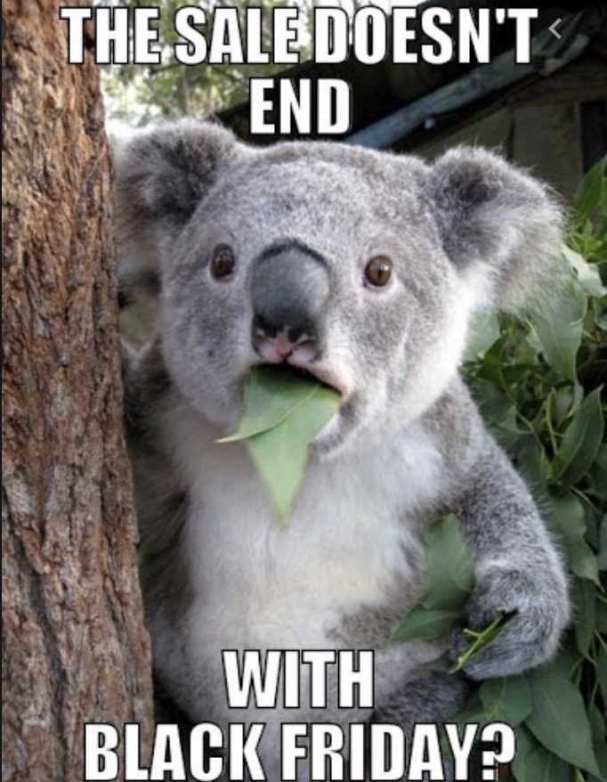 cyber monday animal meme - there is no end