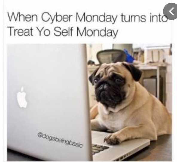 cyber monday animal meme - treat yourself