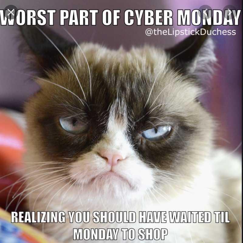 cyber monday animal meme - grumpy cat