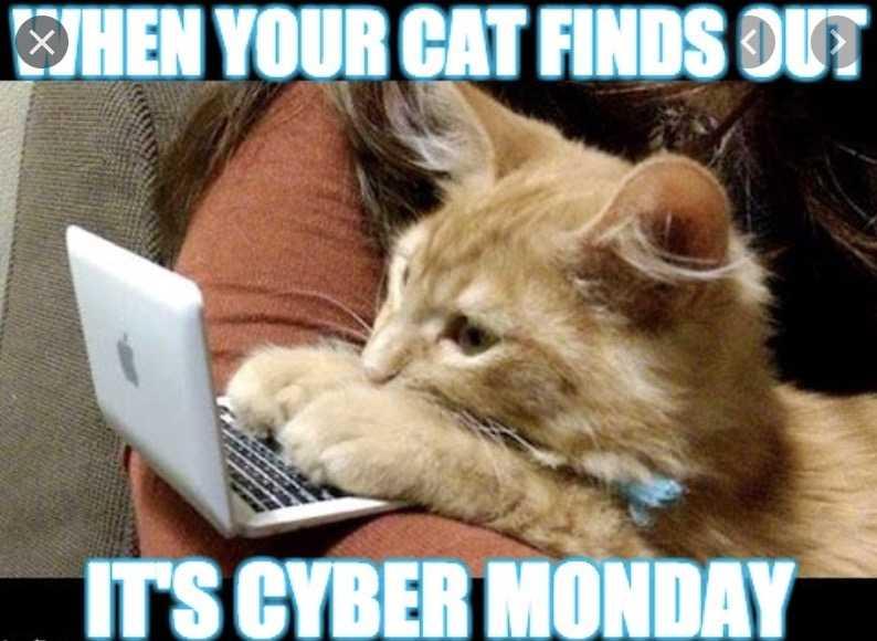 cyber monday animal meme - buy buy buy