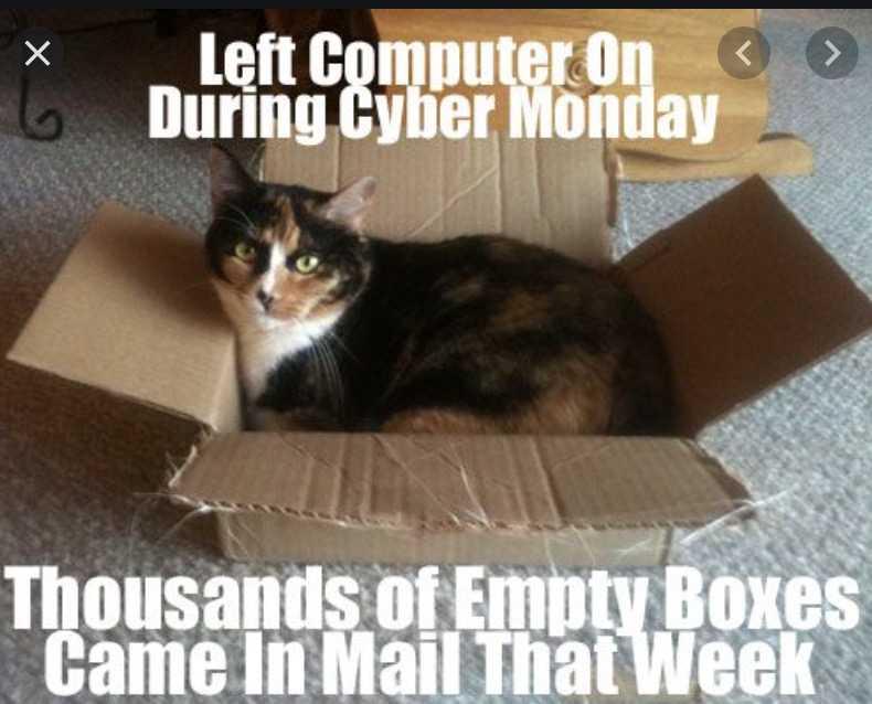 cyber monday animal meme - heaven