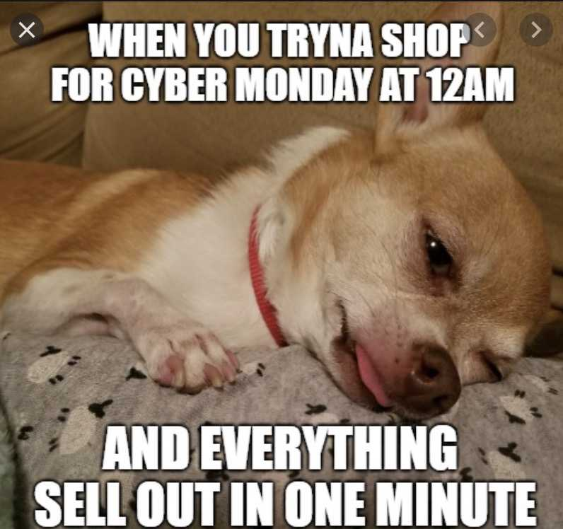 cyber monday animal meme - must shop