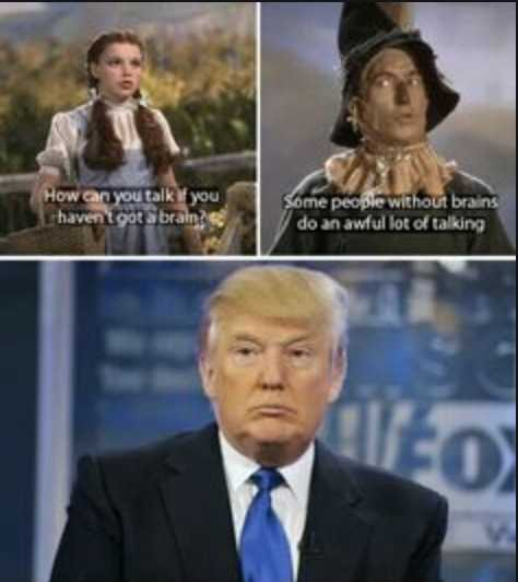 election memes - wizard of oz