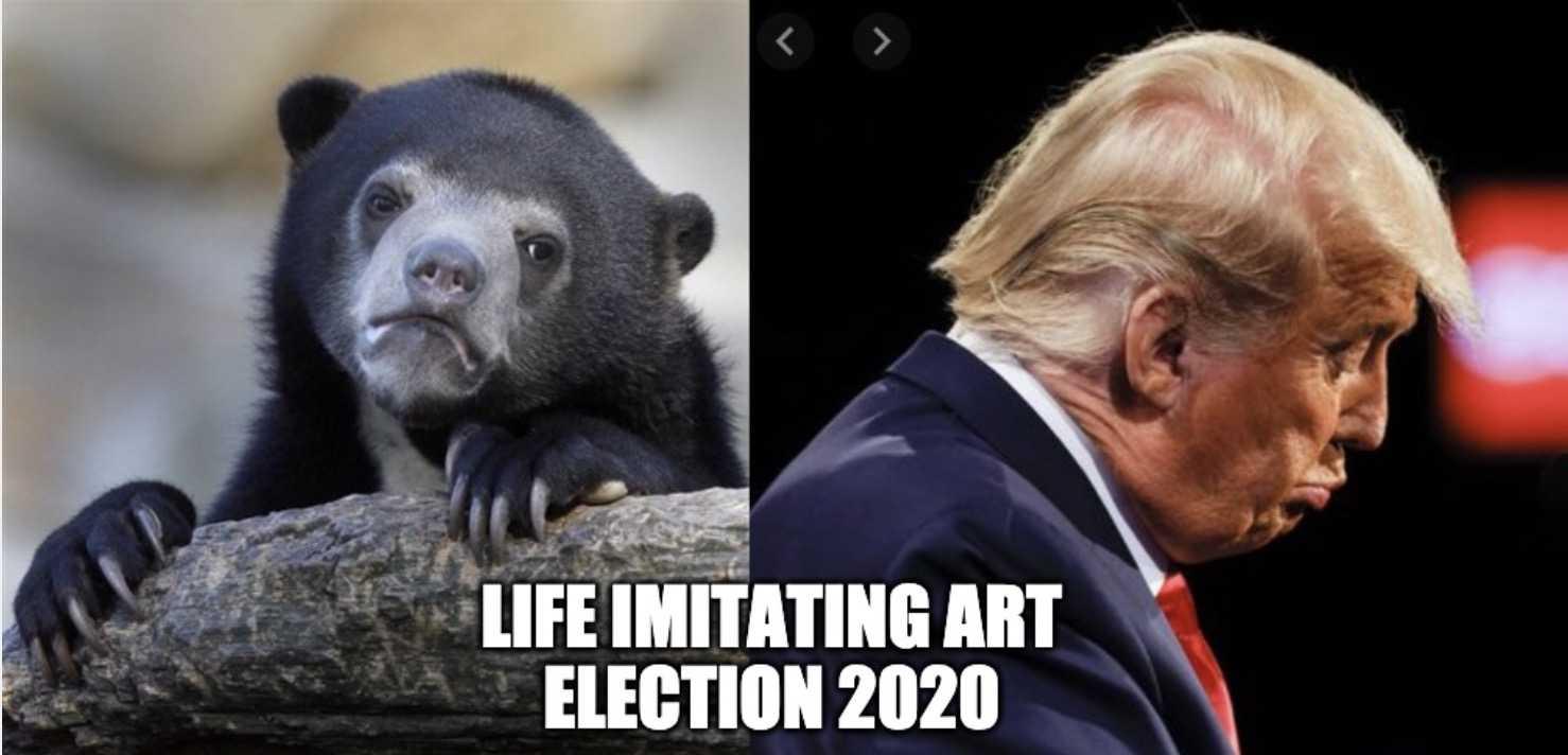 election meme - 2020 election
