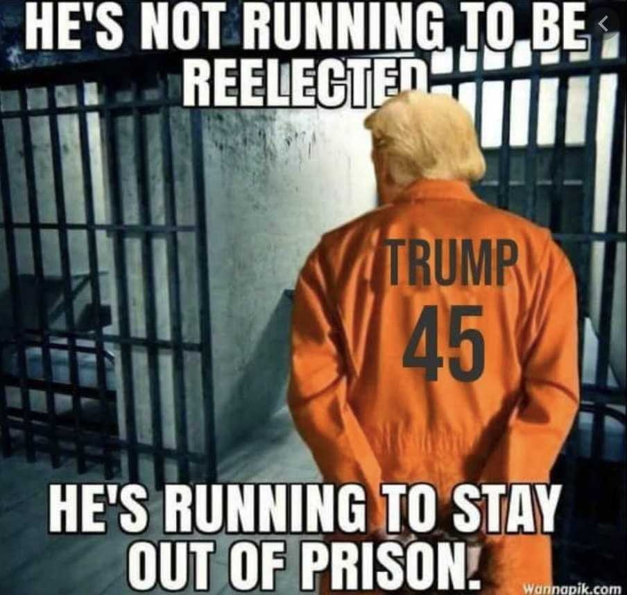 election 2020 meme - staying out of prison