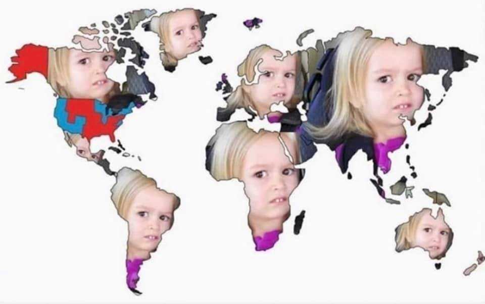 Funny Election Meme - face