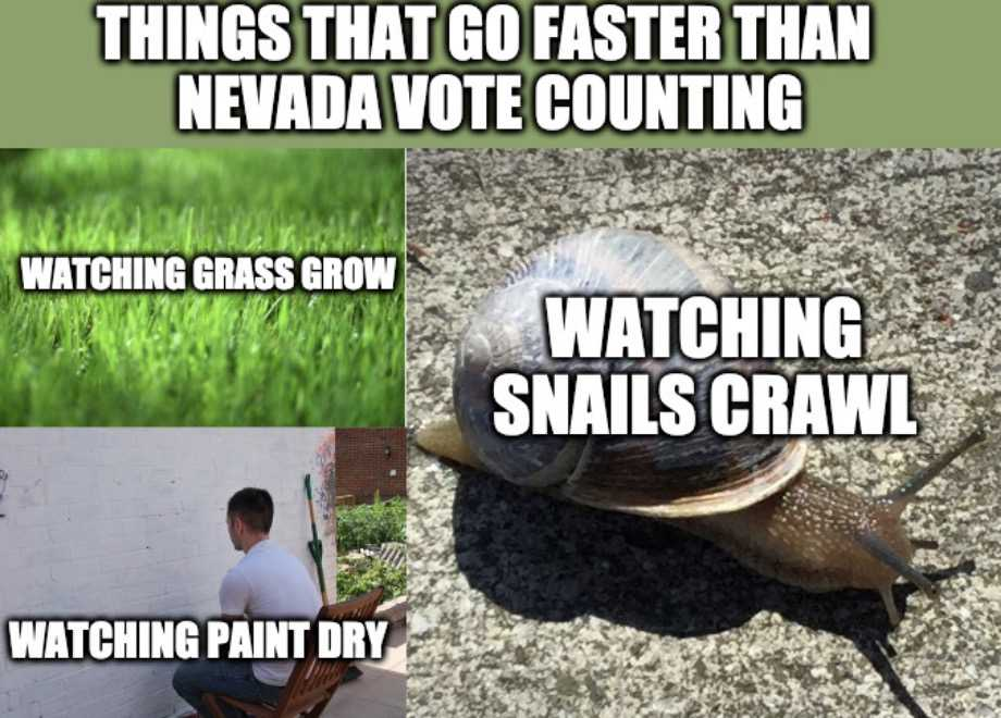 nevada vote counting meme 1 - things that go faster than nevada vote counting