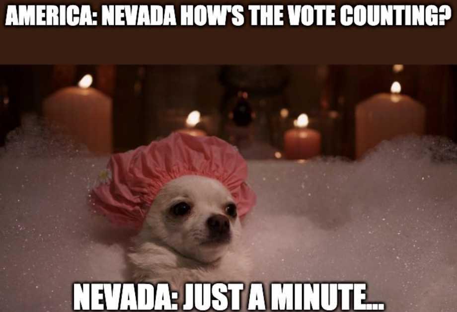 nevada vote counting meme 10 - chiuaua taking bubble bath
