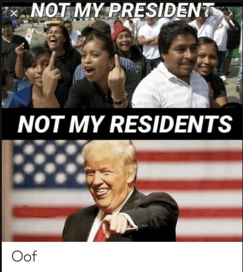 not my president memes - not residents