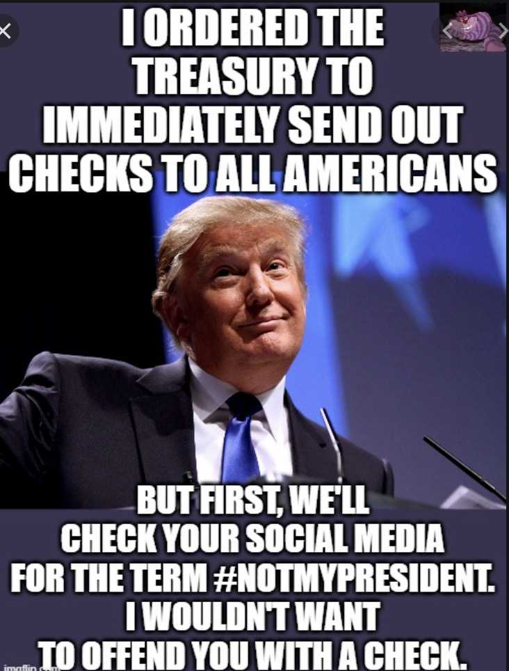 not my president memes - stimulus checks