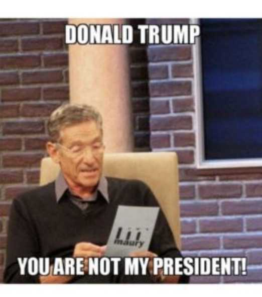 not my president memes - no