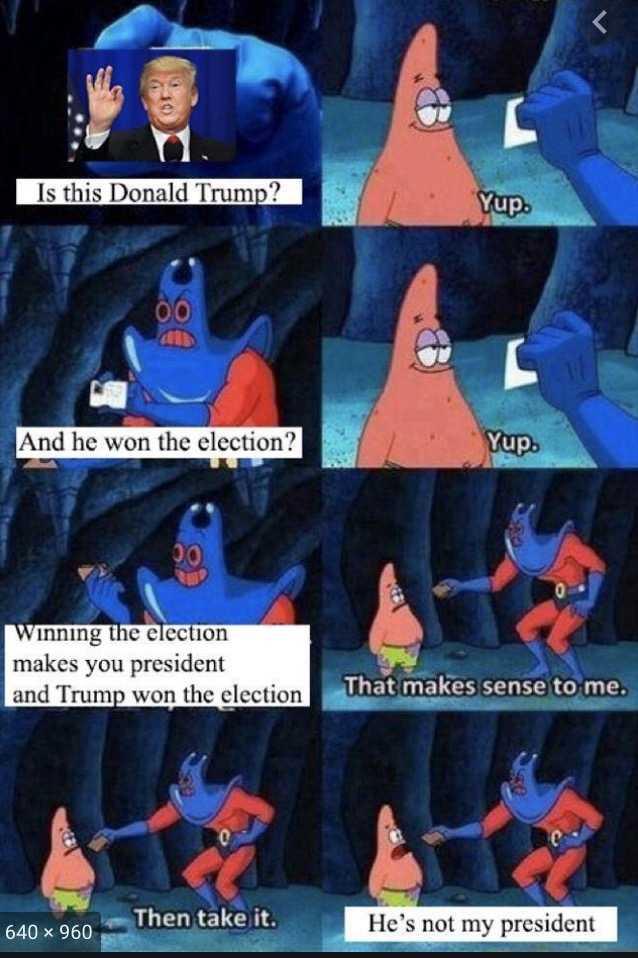 not my president memes - sponge bob