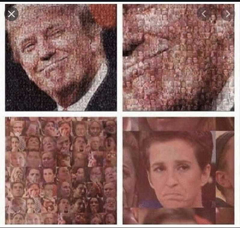 not my president memes - made from pictures of registered democrats