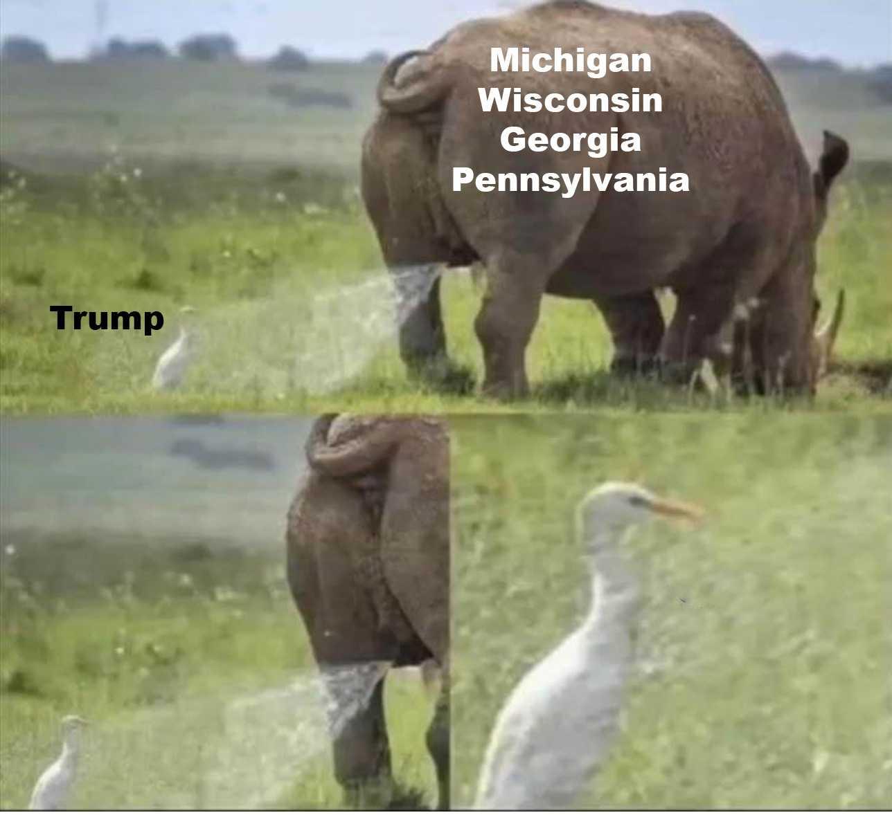 trump election defeat memes - mi wi pa ga