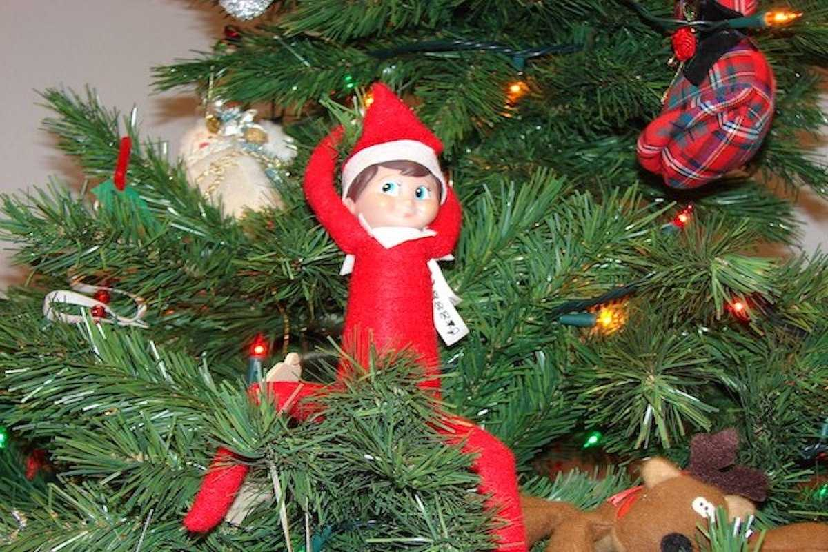 2020 Elf On The Shelf Ideas - On Tree Branch Nothing To Do