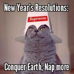 Funny New Years Resolution Memes - conquering earth