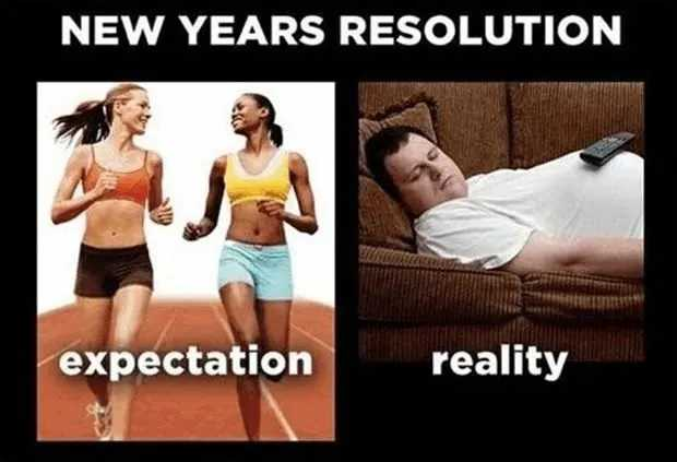 Funny New Years Resolution Memes - expectations vs reality