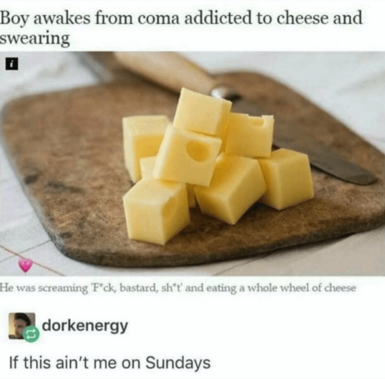 Cheese Memes - Cheese Cured Coma