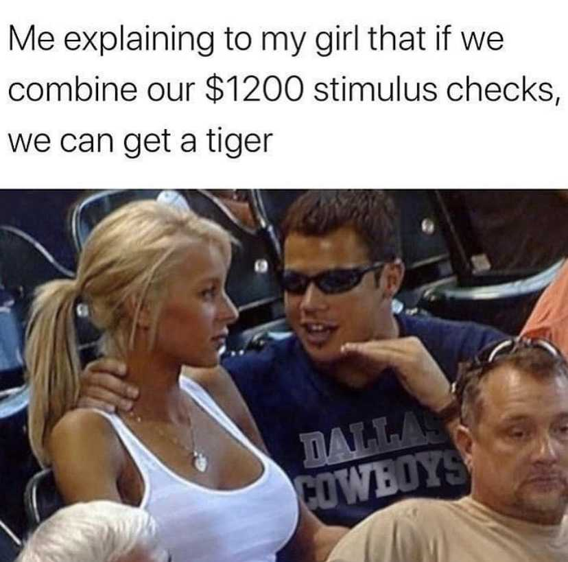 Stimulus Memes - Buy A Tiger