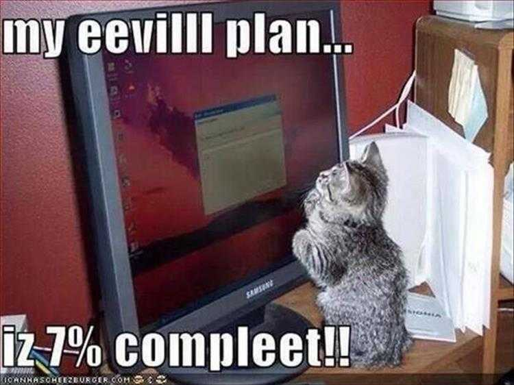 Funny Cat Meme Pictures - Evil Plan