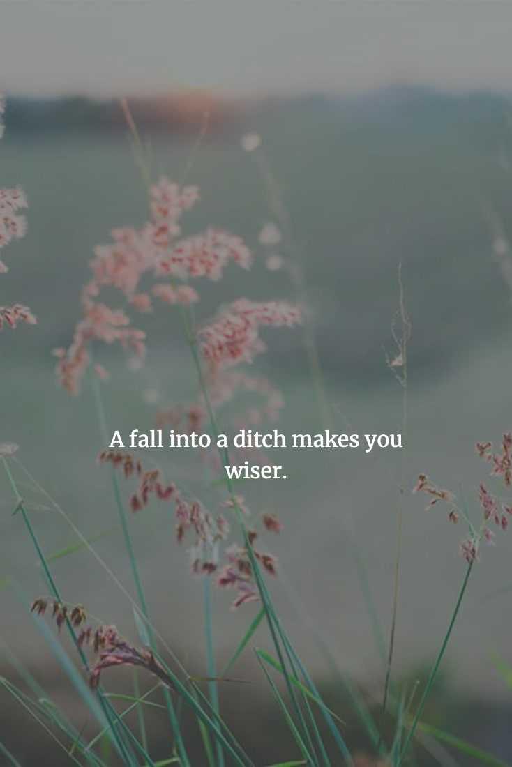 Chinese Proverbs - Learn Through Failure