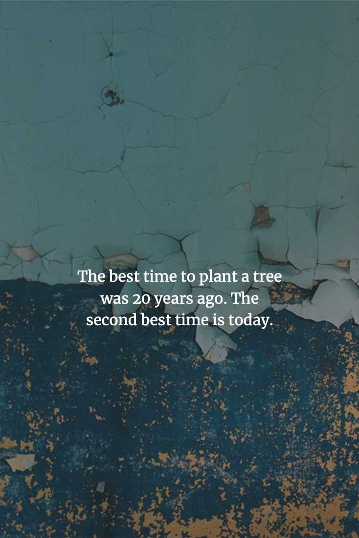 Wise Chinese Proverbs - It's Never Too Late To Make A Start