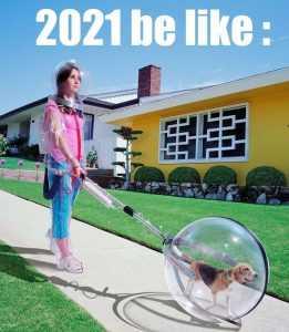 Funny 2021 Predictions - Walking Dog