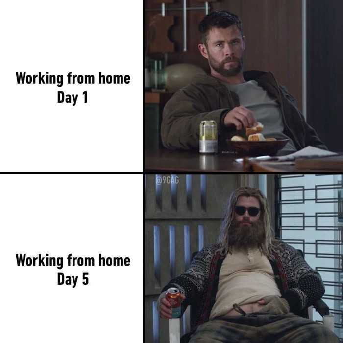 Hilarious Work From Home Memes - Didn't Take Long
