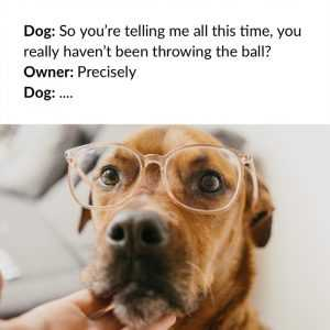 Dog Posters - Ball Throwing Philosophy 101