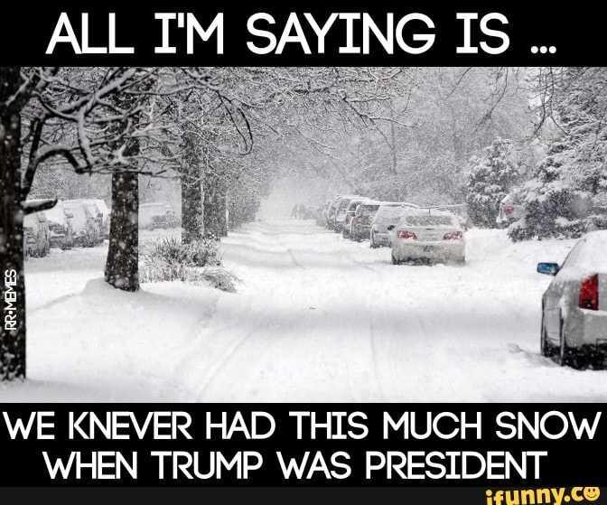 Texas Freeze Memes - Trump State