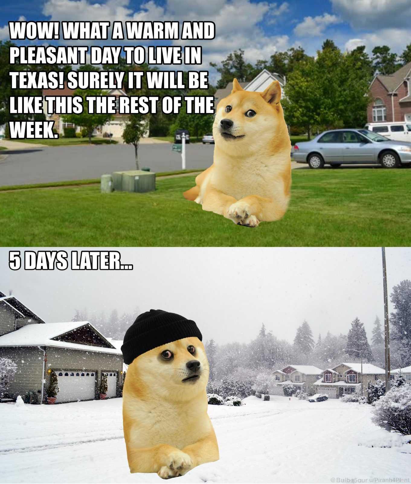 Texas Freeze Memes - Texas Differences