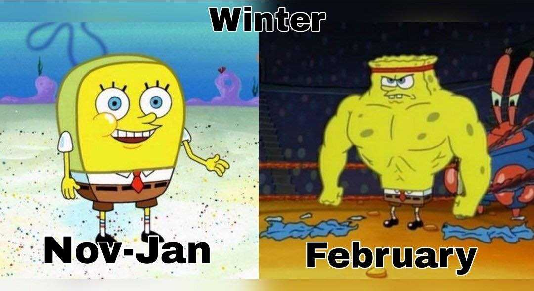 Texas Freeze Memes - Winter Gets Texas Sized In February