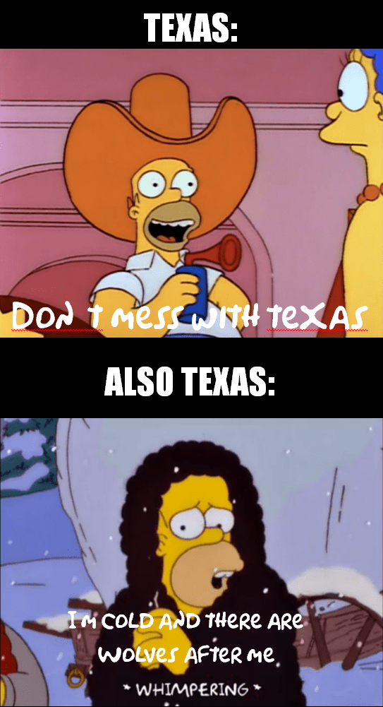 Texas Freeze Memes - Texas Draws The Line At Cold.