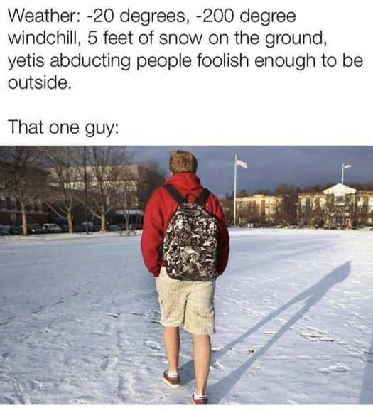 Texas Freeze Memes - The Yeti