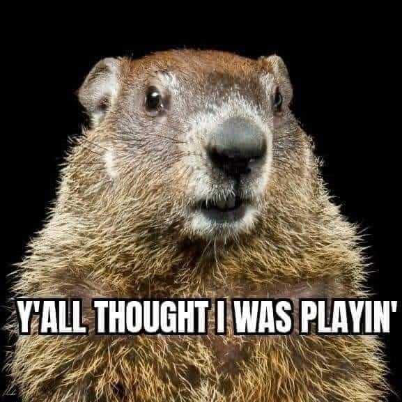 Texas Freeze Memes - Ground Hog Not Playin'