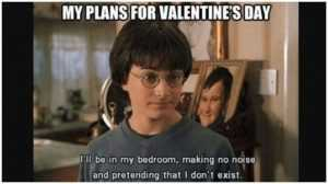 18 Singles Awareness Day Memes - Harry Potter Plans