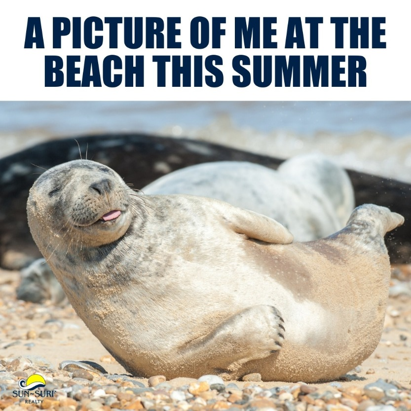 Beach Memes - happy and loving it