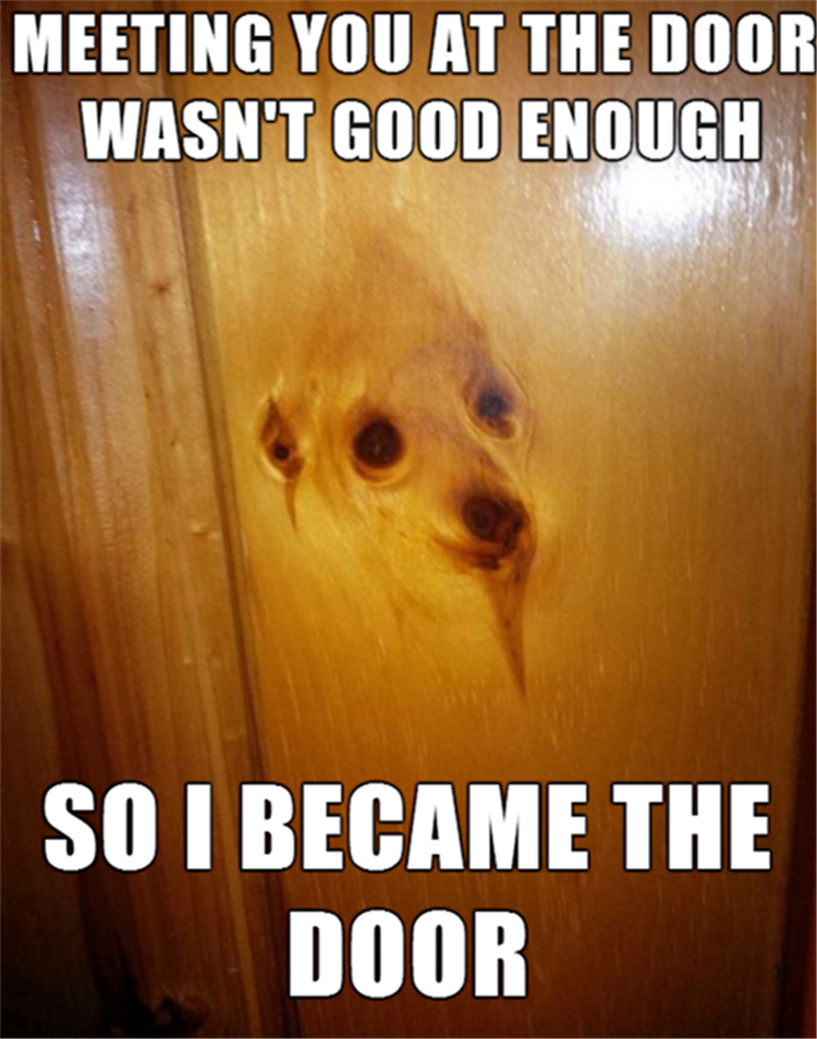Hilarious animal pics with caption - melted into door