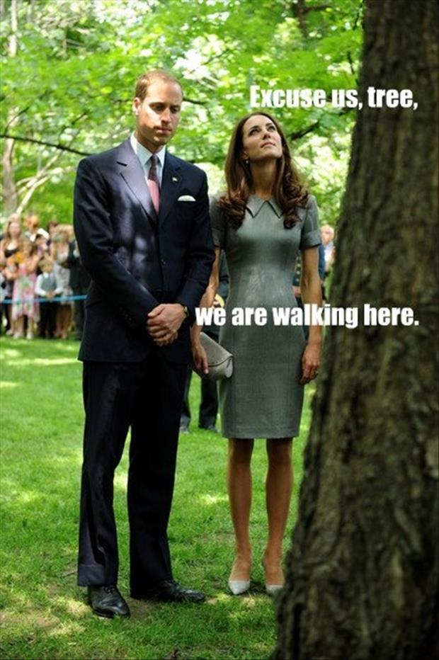 Funny Royal Family Memes